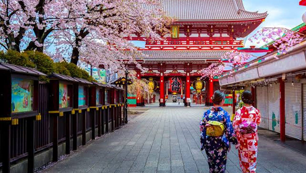 Japan's Must-See Japanese Summer Spots